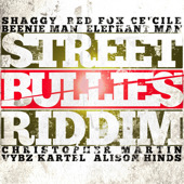 Street Bullies Riddim cover Shaggy Long Time Red Foxx Bounce Vybz Kartel Slow Motion Beenie Man The Doctor Humility Elephant Man Di Energy God Poverty Christopher Martin Vibe is Right CeCile Nah Stress Ova man Alison Hinds Rags Up Give it to Them cds single art