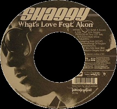 Shaggy Akon What's Love vinyl single cover