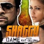 Shaggy featuring Kat DeLuna Dame