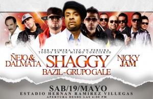 Shaggy at the Estadio Hernan Ramirez Villegas in Pereira Colombia May 19 2012