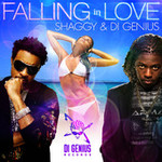 Shaggy & Stephen Di Genius McGregor new 2012 song Falling in Love single cover