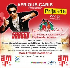 Festival Afrique-Carib 2012